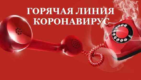 https://www.onlinetambov.ru/news/coronavirus/v-tambovskoy-oblasti-rabotayut-telefony-goryachey-linii-po-voprosam-koronavirusa/